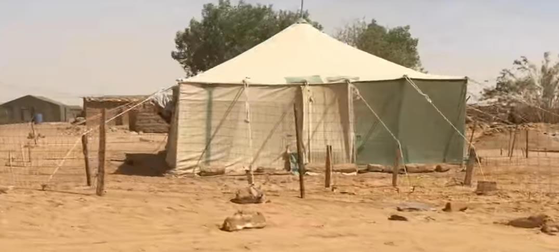 Una Semana en Los Campamentos De Refugiados Saharauis